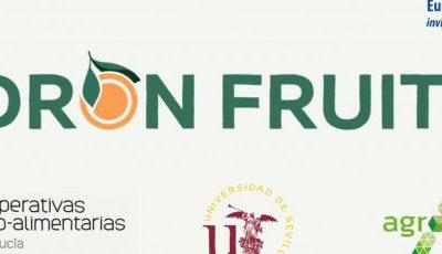 Agrosap participa en el proyecto Dronfuit para aforamiento de frutales con drones y visión artificial