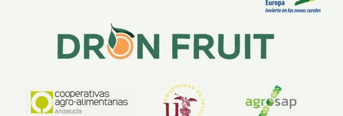 Dronfruit